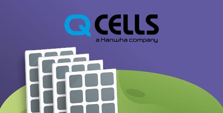 image couverture avis in sun we trust sur panneau solaire de la marque q cells