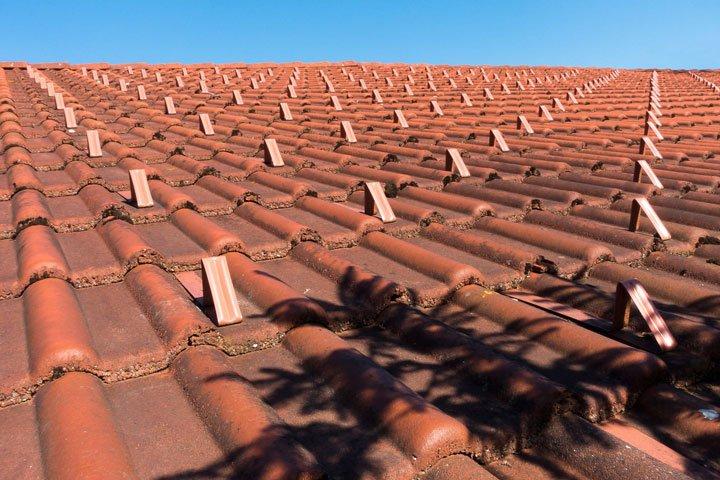 ombre d'un arbre projetée sur un toit affectant la production de panneaux solaires
